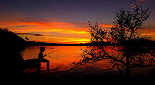 don u0027t teach people to fish teach to love the process of learning