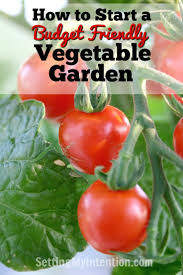 Starting An Organic Vegetable Garden by How To Start A Budget Friendly Vegetable Garden Vegetable Garden