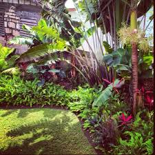 Tropical Landscape Ideas by Tropical Garden Great For Along Back Fence Gardens For Home
