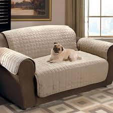 sofa fã r kinder die besten 25 pet sofa cover ideen auf sofabezüge