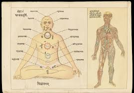Human Anatomy In Pdf File Two Drawings The Easiest Method How To Practice Pranayam By