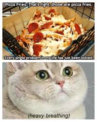 Heavy Breathing Meme - pizza fries heavy breathing cat funny pinterest heavy