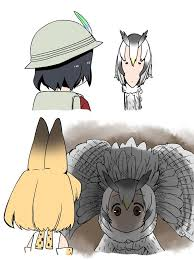 White Owl Meme - the defensive northern white faced owl kemono friends know your meme