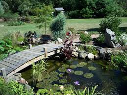 diy grounds ponds ideas new home design