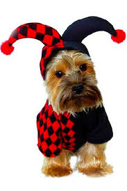 Cute Dog Halloween Costumes Black Red Clown Cute Pet Dog Halloween Costume