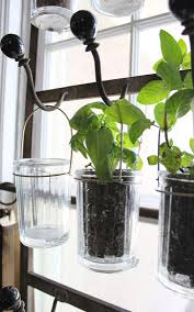 tips about life garden ideas indoor herb tips about life