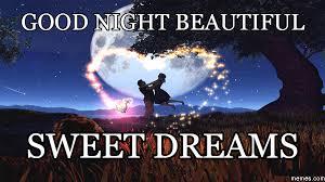 Sweet Dreams Meme - good night beautiful good night pinterest