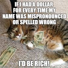 Rich Cat Meme - money cat imgflip