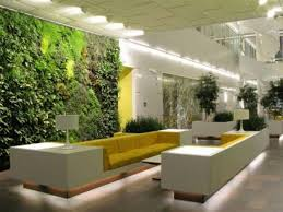 garden indoor garden plants decorating with yellow furniture