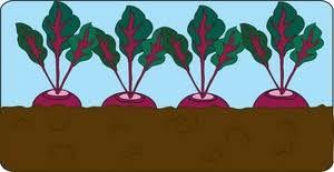 vegetables clip art library