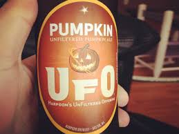 Dogfish Pumpkin Ale by Best Pumpkin Beers This Fall Business Insider