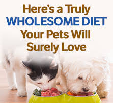 the best and worst pet foods 13 pet foods ranked