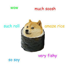 Top Doge Memes - 7 best doge images on pinterest funny stuff so funny and funny