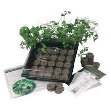 Indoor Herb Garden Kit Indoor Culinary Herb Garden Starter Kit