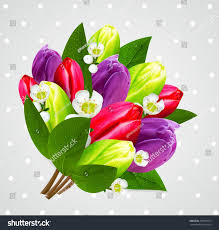 very beautiful flowers composition bouquet stock illustration