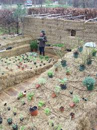 strawbale gardening snoopdoggmusic com