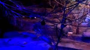 brookfield zoo winter lights batcave brookfield zoo australia house 7 25 14 youtube