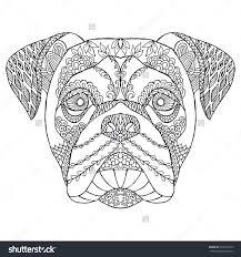 2155 u0027s dog images standard