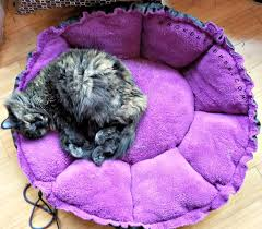 Petmate Indigo Lots For Tots Giveaway Hop Win A Cat Bed For You And Your Shelter