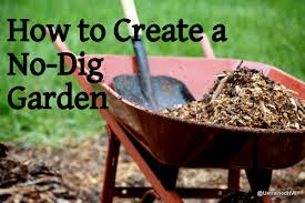 how to start a no dig vegetable garden
