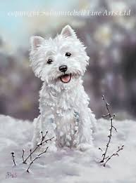 the snowman westie terrier cards pack of 10 by paul