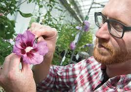 contreras osu ornamental crops breeder oregon s