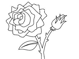 rose flower drawings for kids nice roses coloring page for kids