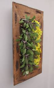 54 best living walls images on pinterest green walls living