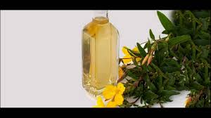 Evening Primrose Oil For Hair Loss Oats And Evening Primrose Oil Helps To Prevents Hair Loss Due To