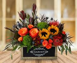 flowers dallas thanksgiving flowers in bloom flowers gifts and more
