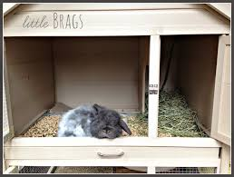 Dash Of Darling Home Tour by Little Brags A Lazy Sunday And A Bunny Home Tour