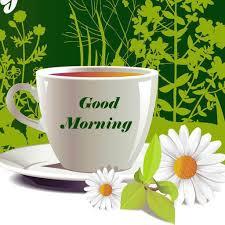 wallpaper morning wishes best hd wallpaper