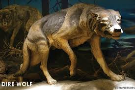 Iowa wild animals images 11 extinct animals you didn 39 t know were iowan dnr news releases jpg