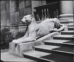 lioness statue museum of the city of new york statue of lioness outside the