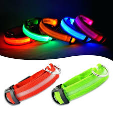 light up collar amazon outstanding lighted dog collars led dog collars reviews 4 light up