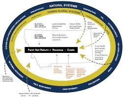 Colorado Wildfires Explained In One Chart Climate Central Agriculture Mca