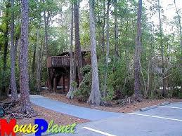Treehouse Villas At Disney World - working in magic kingdom staying in cabins walt disney world