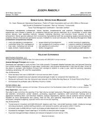 Project Manager Resumes Examples by It Manager Resume Examples
