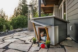 stunning pet home design photos amazing home design privit us