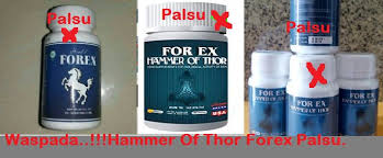 ciri hammer of thor asli dan palsu forex herbal