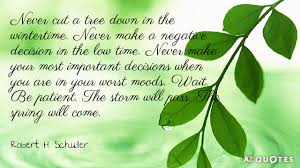 robert h schuller quote never cut a tree in the wintertime