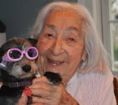 senior citizen gifts five gifts for an elderly dog lover gifts for senior citizens