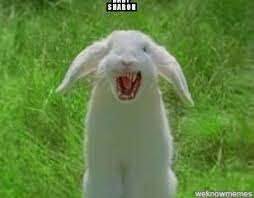 Angry Bunny Meme - angry bunny weknowmemes generator
