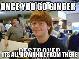 Ginger Meme - once you go ginger its all downhill from there cheesy ginger kid