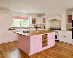 pink kitchen ideas pink kitchen houzz