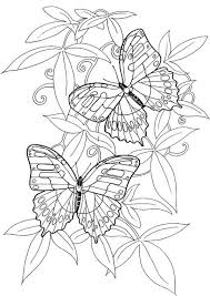 hard butterflies coloring pages for to print