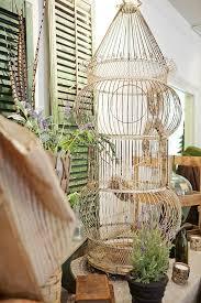 celebrate creativity vintage bird cage