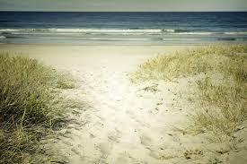 Beach Houses For Rent In Hilton Head Sc by Hilton Head Island U0026 Bluffton Sc Real Estate Sc Properties In