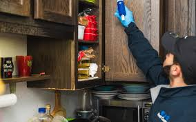 how to clean cupboards after pest cockroach infestations johnny b pest