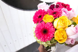 flowers to send new baby flowers you should send as a gift